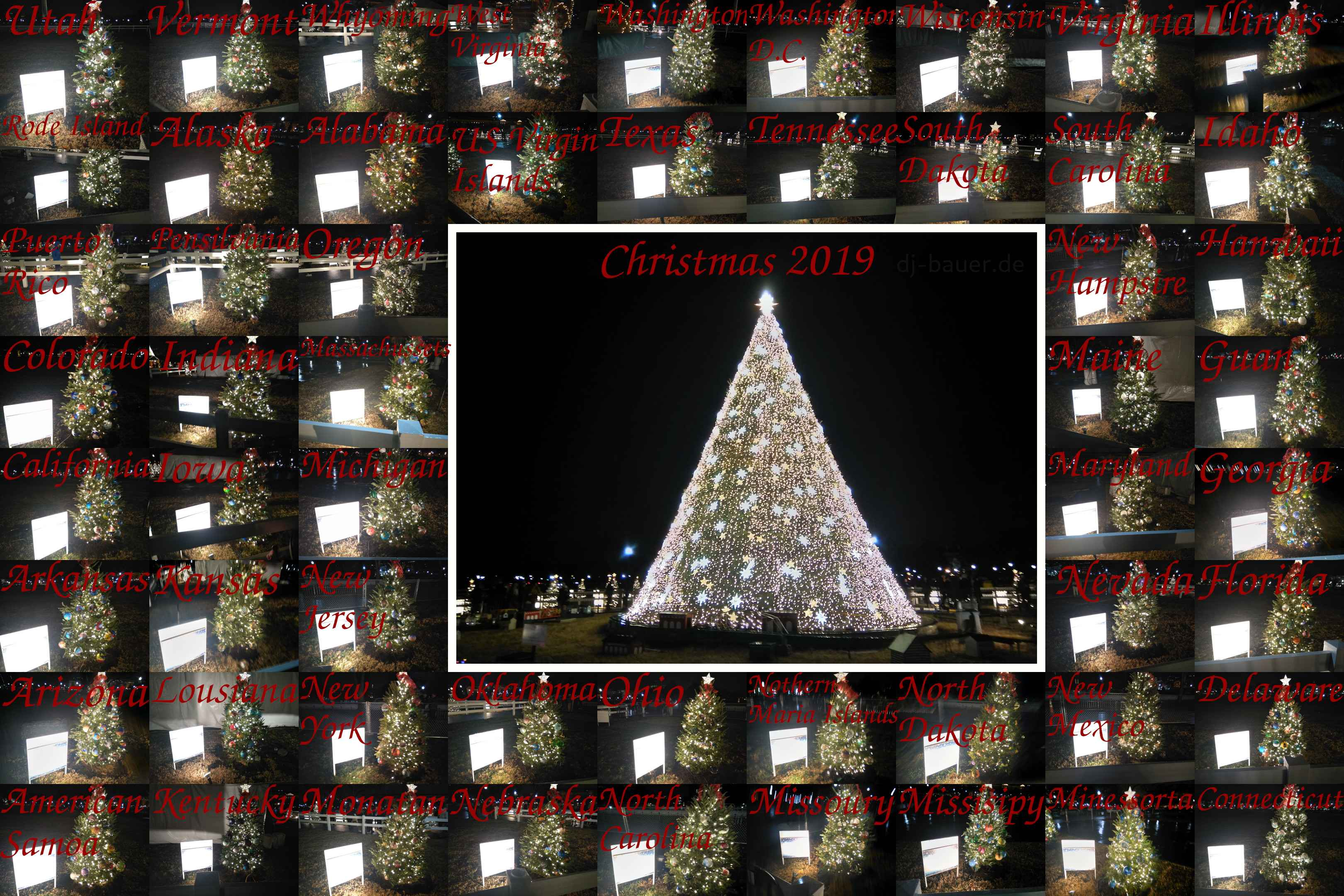 Collage of every single of the national christmas tree